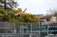 Cal Women's Swimming and Diving