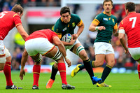Rugby World Cup 2015 Quater Finals: South Africa vs. Wales