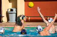 Waterpolo: California Golden Bears vs Penn State Behrend Lions