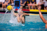 Cal vs UCLA at Mountain Pacific Invitational