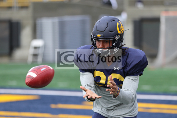 Image result for cal golden bears spring practice 2019