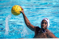 2017.04.01 USA Water Polo National League: Los Angeles Athletic Club vs USA University