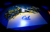 Blue and Gold Bash