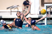 Cal vs Arizona State University Women's Water Polo