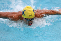 Cal Men's Swimming and Diving